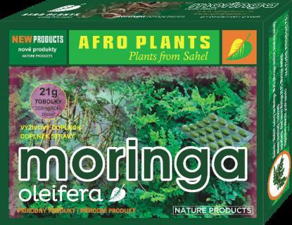 Moringa oleifera – mikrobuněčná výživa třetího tisíciletí