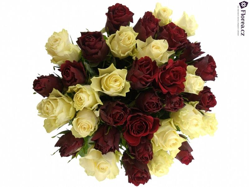 Květina, krása, vůně a ženy