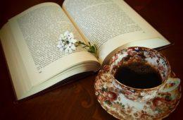 Není kniha jako kniha, ale která je lepší
