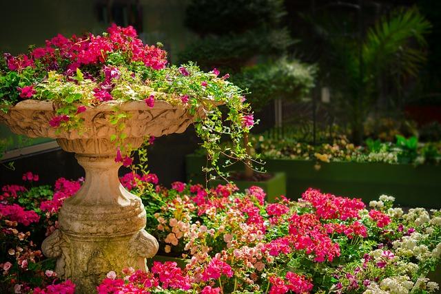 okrasná zahrada a skalka