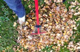 Jak na jarní práce na zahradě?